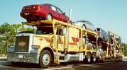 Cargo carriers auto transport specialist at BROWNWOOD,  TX
