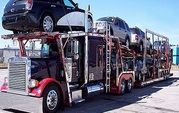 Free Auto Transportation Quote Form at NEWARK,  CA