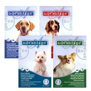 Shop Advantage for Dogs with Free Shipping