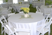 California chiavari chairs